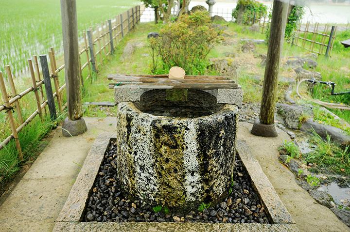 水田の中にあり、地域の人々が大切に守っている「白水の井戸」
