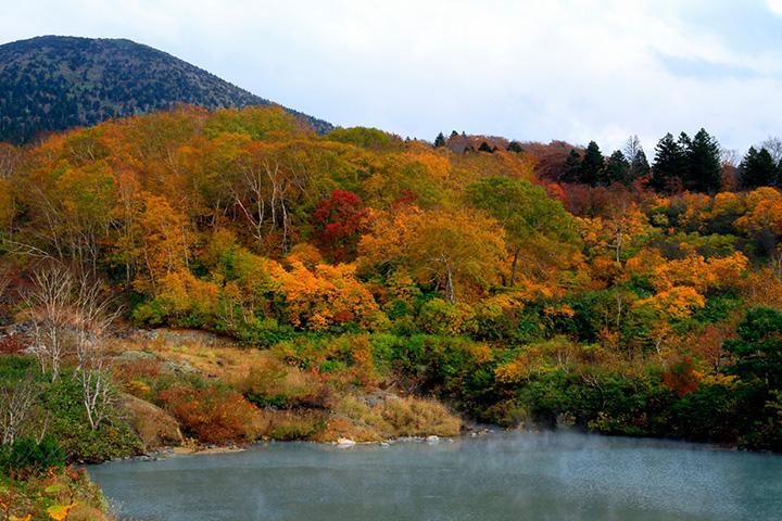 湯気が立ち込める沼と紅葉の幻想的な競演
