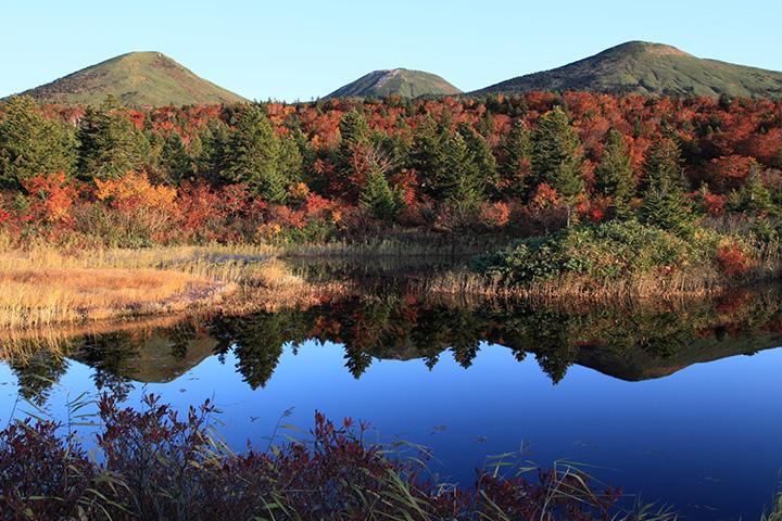 青い沼に映り込む紅葉が優美