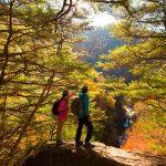 【2019年版】八ヶ岳・清里・小淵沢で出合える紅葉の絶景9選