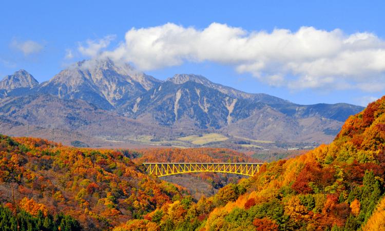 雄大な八ヶ岳を背景に、色づく渓谷と黄色い橋が調和