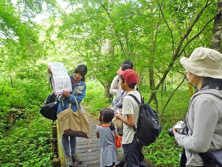森に関する知識が得られるガイドウォーク