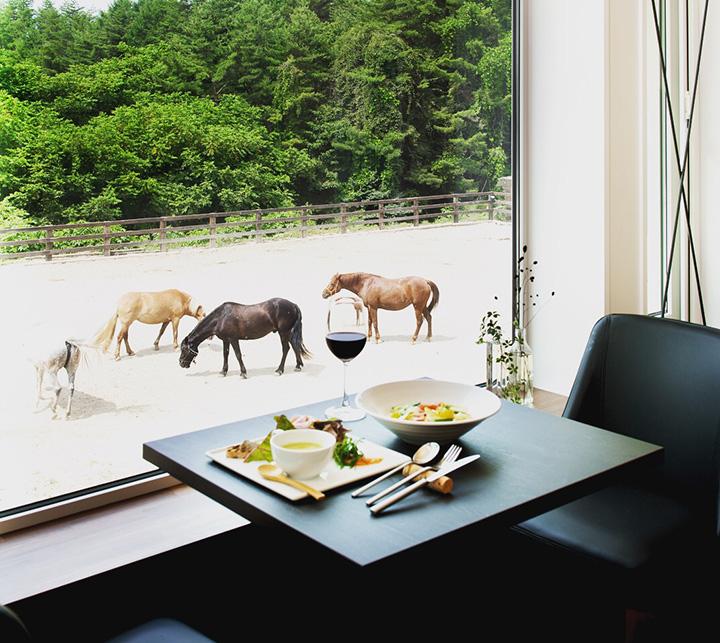 馬を眺めながら食事ができるレストラン