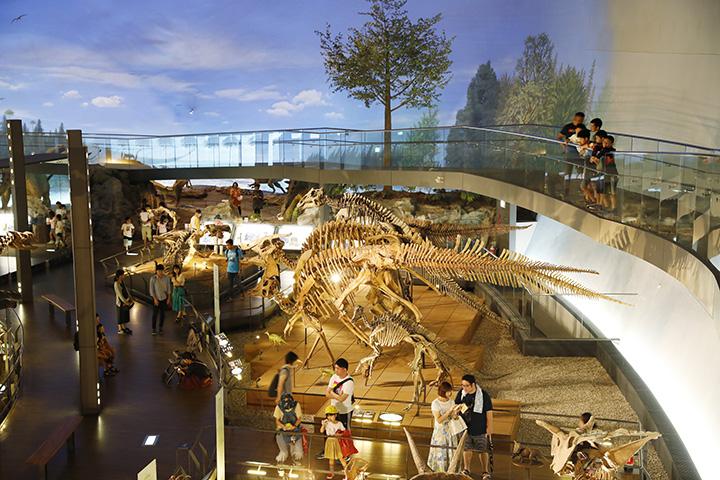 様々な恐竜の全身骨格を間近で見ることができる「恐竜の世界ゾーン」