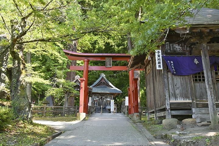 鳥居の奥に佇む「厳島神社」