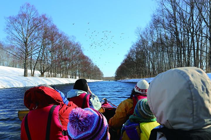 クルージング中は撮影も可能。木々の葉が落ちる冬は野鳥の姿を見つけやすい