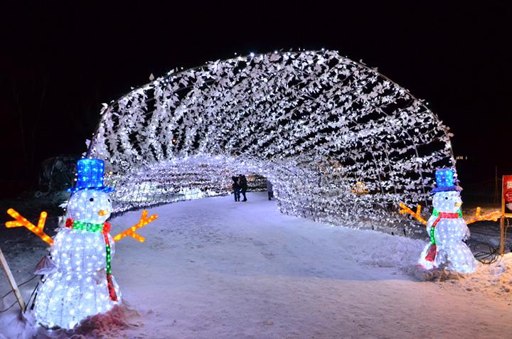 農業用ハウスの骨組みを利用した光のトンネルは人気の撮影スポット(Ⓒ音更町十勝川温泉観光協会)