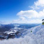 富良野・美瑛・トマムの冬を楽しむ観光スポット7選