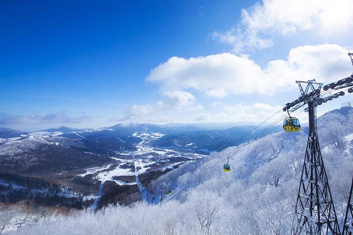 【2019-2020年版】富良野・美瑛・トマムの冬を楽しむ観光スポット8選