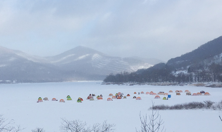 氷上に色とりどりのテントが並ぶとワカサギ釣りのシーズン到来