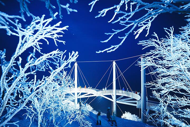 2020年12月1日(火)~25日(金)は夜のライトアップを実施。光にきらめく霧氷の絶景が楽しめる