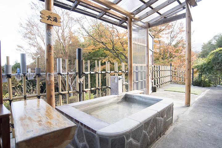 「犬湯」の湯温は人用の足湯より低め、25度程度に設定。シャンプーは禁止なので要注意