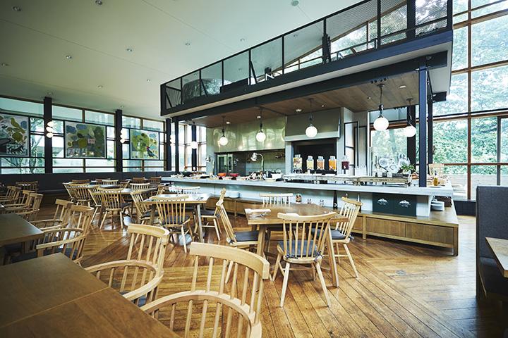 仙石原の森に囲まれ、自然と融合したデザインの店