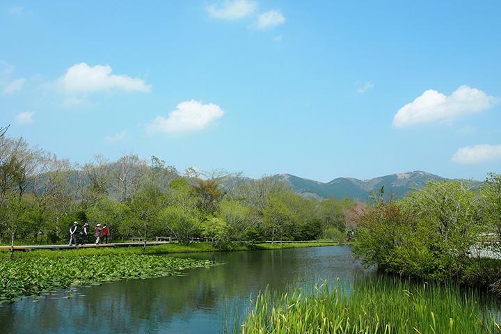 標高約650mの場所に位置しているので、真夏でも涼しく快適に散策を楽しめる
