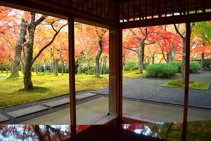 庭園に佇む茶室「真和亭」。季節のお菓子と抹茶をいただける