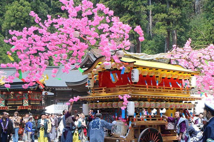 社寺や参道にも映える、栃木県の県花ヤシオツツジのピンク色