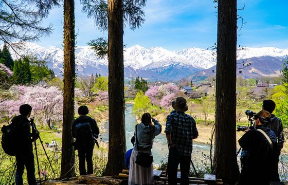 【2021年版】春の大町・白馬エリアでおすすめの観光&桜スポット
