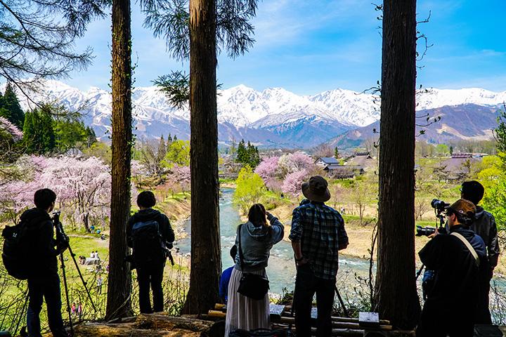 【2020年版】春の大町・白馬エリアでおすすめの観光&桜スポット