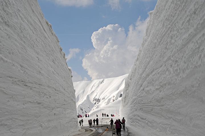 ダイナミックな雪壁が約500m続く。春とはいえ、防寒対策はしっかりと