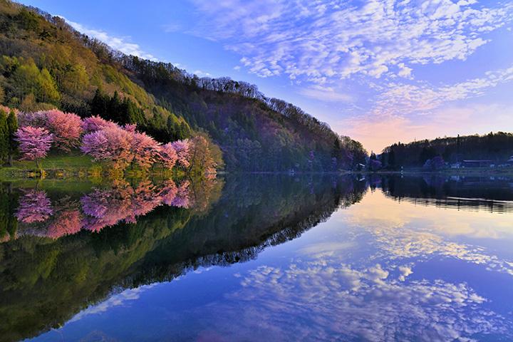 桜のシーズンには早朝から大勢のカメラマンが集う撮影スポットとしても有名