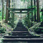 阿蘇を訪れたら立ち寄りたいパワースポット6選。水源や丘から神社まで