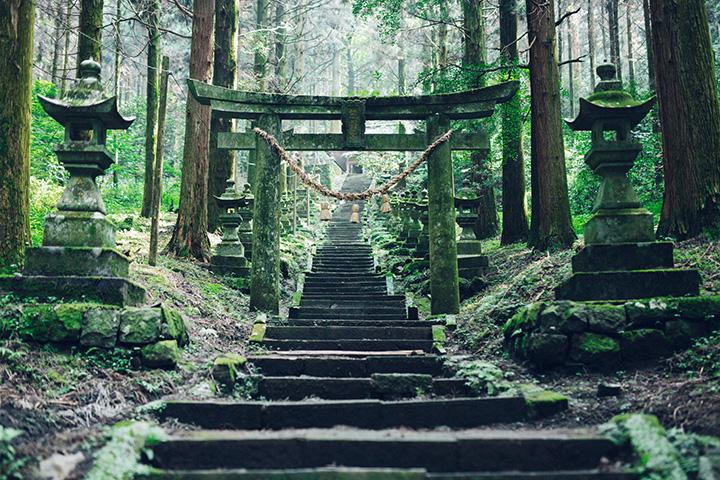阿蘇を訪れたら立ち寄りたいパワースポット6選。水源から神社まで