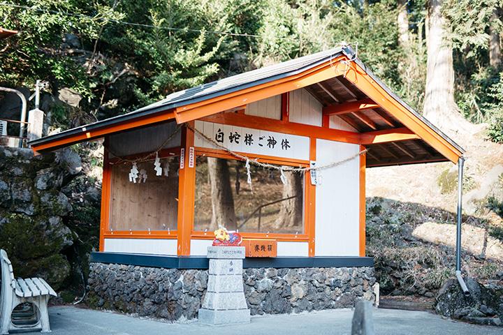 境内には、生きた白蛇をご神体として祀る社が2つある