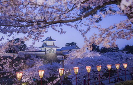 【2020年版】春の金沢・加賀エリアでおすすめのイベント6選