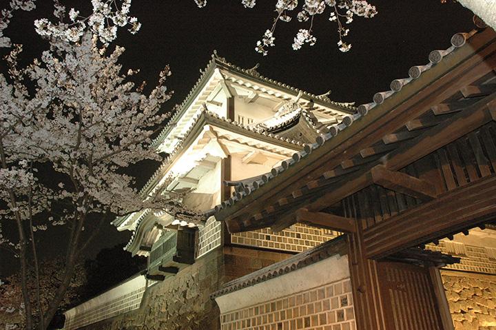 凛として闇に浮かび上がる金沢城に夜桜が情趣を添える