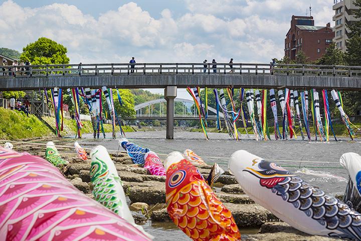 鯉のぼりが流れる様子は、まるで大きな鯉が川登りをしているよう。写真は梅ノ橋周辺