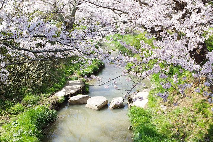 熊坂川河畔