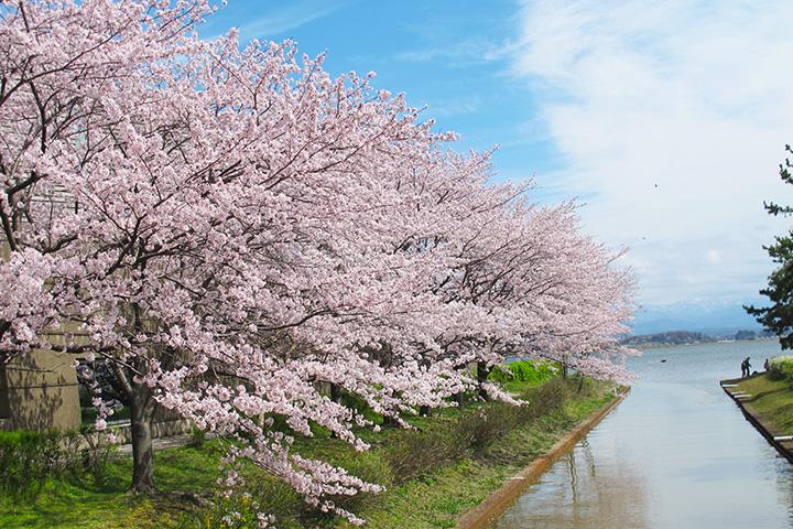 柴山潟湖畔公園