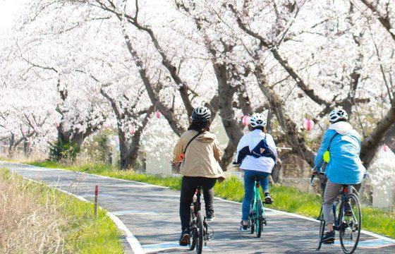 「自転車のまち」土浦市の気候・気温を知っておこう!