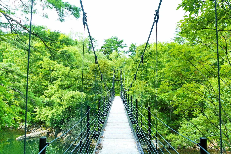 湖畔に整備された「東北自然歩道」の吊り橋