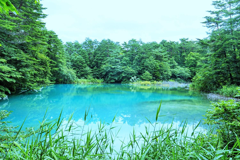 弱酸性の水質で神秘的な色合いの「青沼」