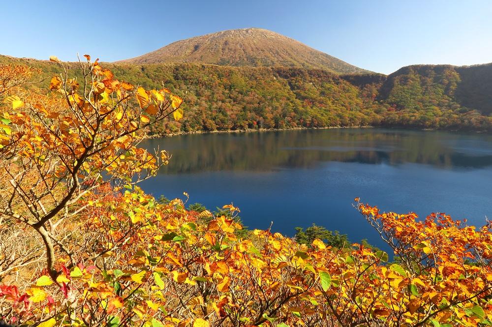 大浪池(おおなみのいけ)の水面に赤や黄色に色づく紅葉が映える絶景