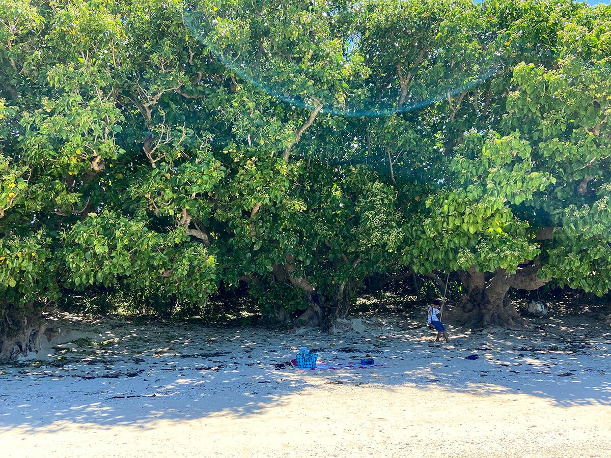 木から下がるブランコがあり、島ならではの遊びができる。フォトスポットとしてもおすすめ