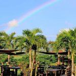 【2021年版】次の旅で必ず行きたい石垣島の絶景カフェ6選