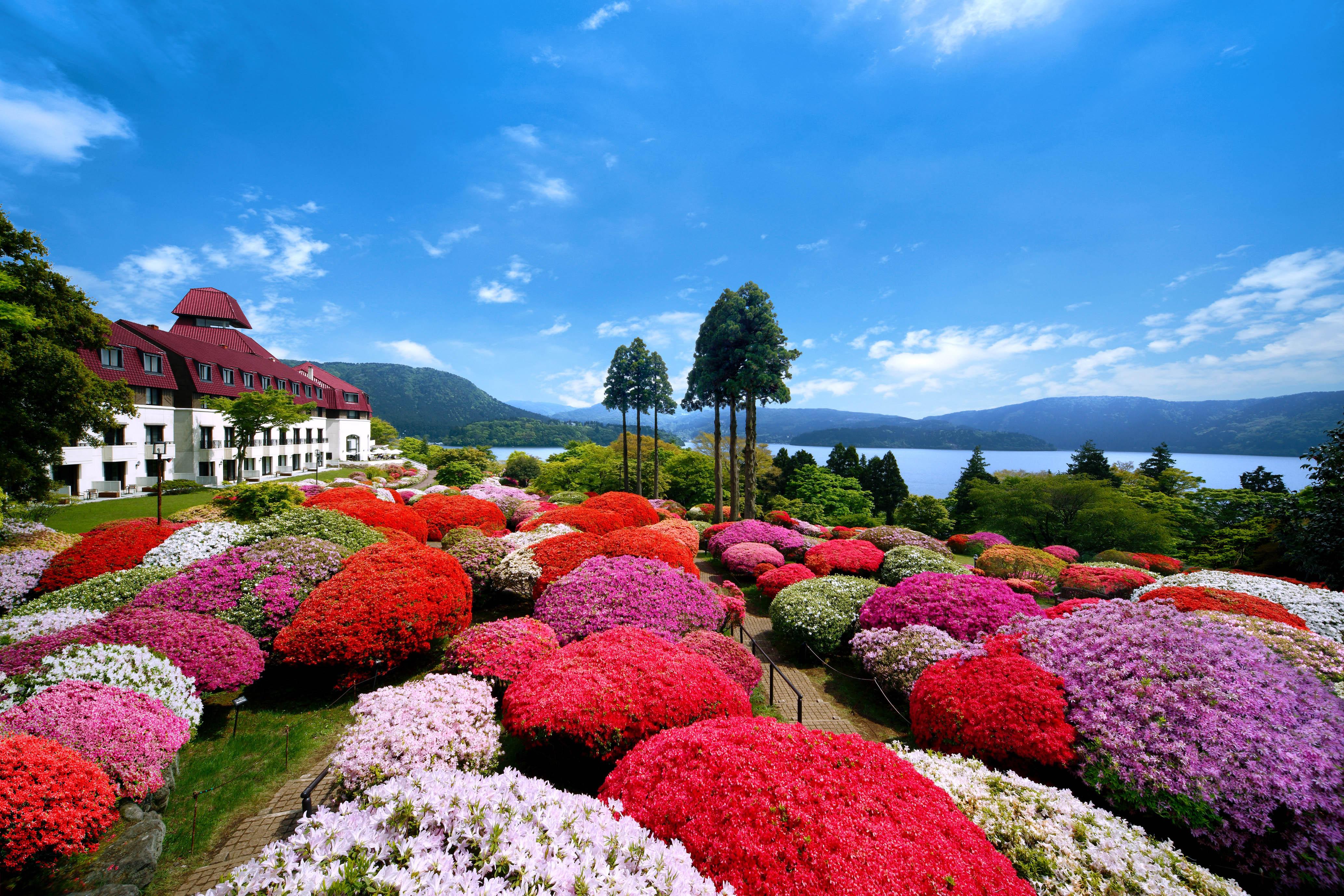 国内外から集めて植えられたツツジは約30種3,000株、シャクナゲは約20種300株もある