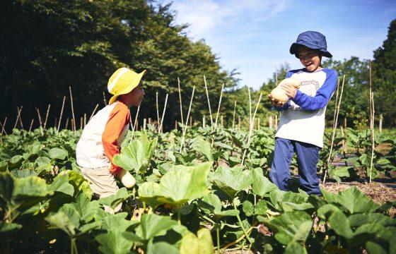 親子で一緒に「星野リゾート リゾナーレ那須」で楽しむ1泊2日のワクワク農業体験|おすすめモデルコース