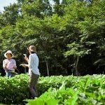 「星野リゾート リゾナーレ那須」で楽しむ、2泊3日の快適アグリツーリズモリゾート|おすすめモデルコース