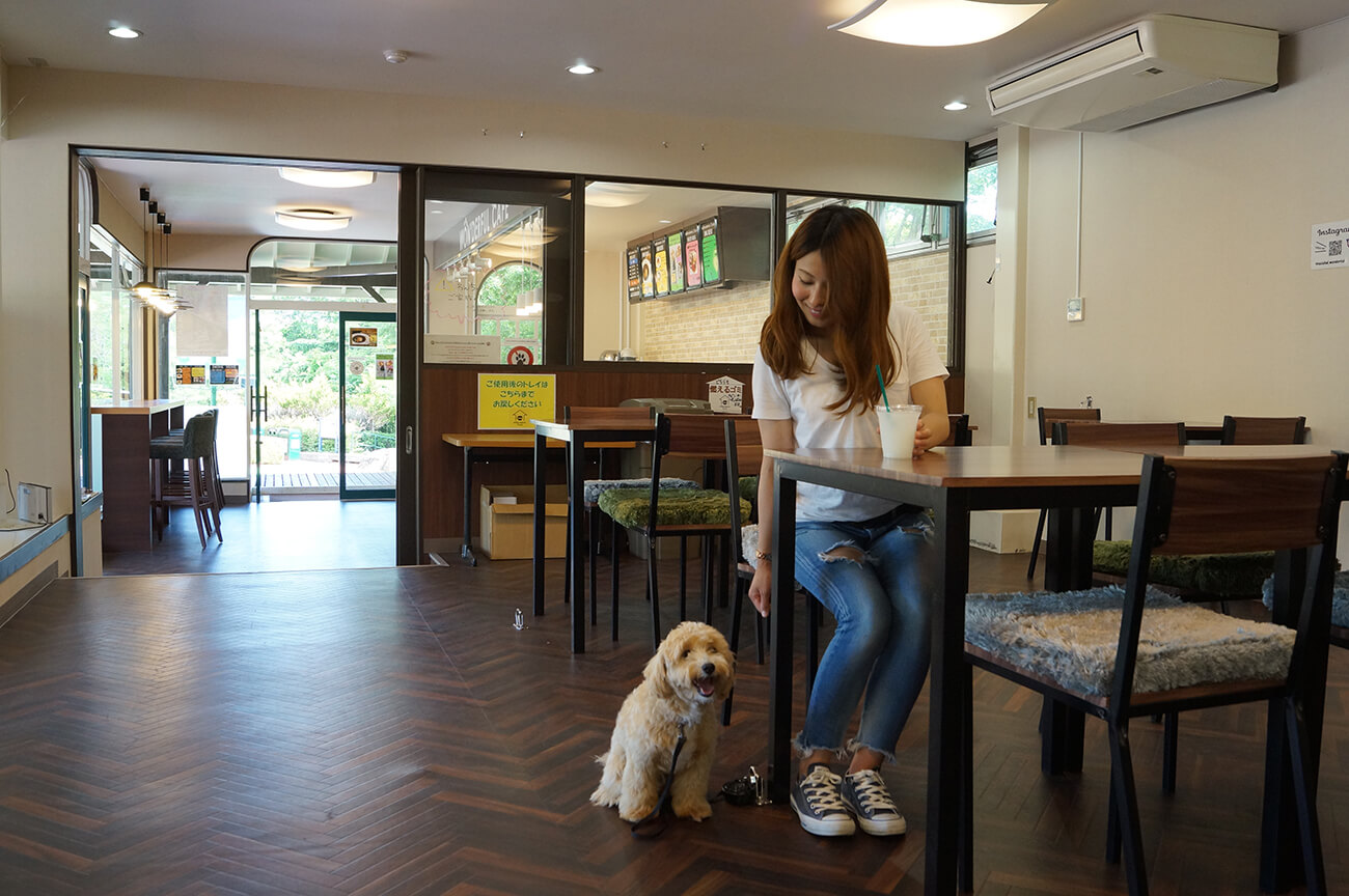 室内テーブル席と外のテラス席共に、ペットと利用できる「わんっダフルカフェ」