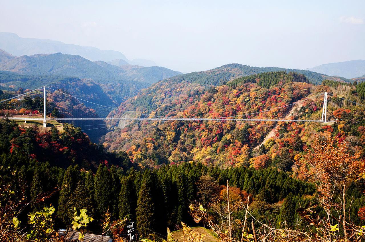 """北方エリアから展望台まで登れば、橋全体と紅葉、くじゅう連山を一度に見ることができる ©️九重""""夢""""大吊橋管理センター"""