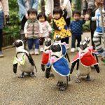 親子で行きたい出雲・松江のワクワク観光・体験スポット9選