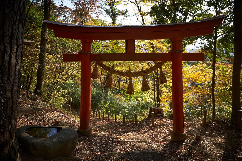 松本城主が代々、社殿の維持管理に努めた天満宮。赤い鳥居と黄色に色づく木々の鮮やかな対比も美しい