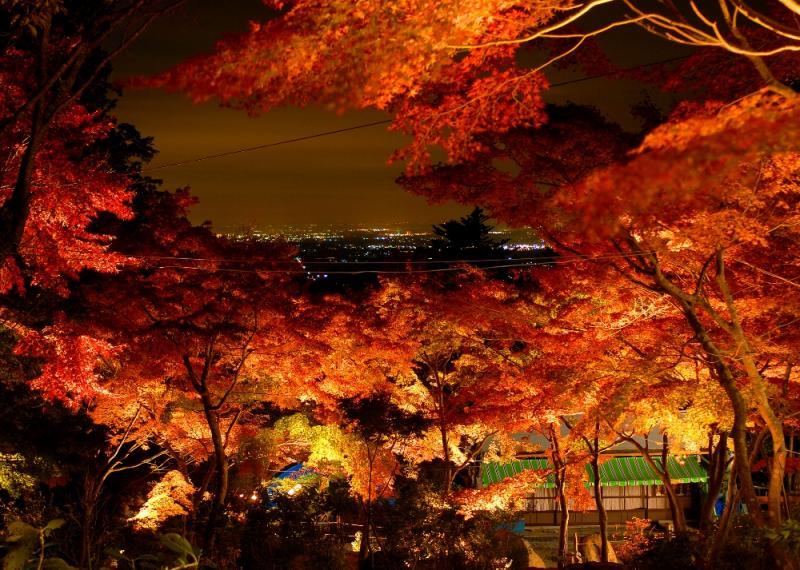 山頂からはつくば市が一望できる。天気が良ければ東京スカイツリーや富士山を望むことも