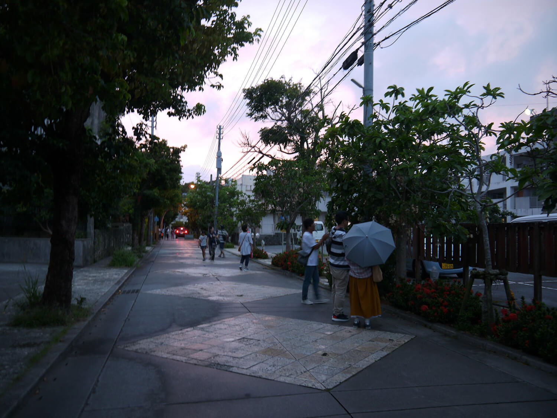 サガリバナのシーズンはライトアップされる瑞泉通り ©️NPO法人おきなわ環境クラブ