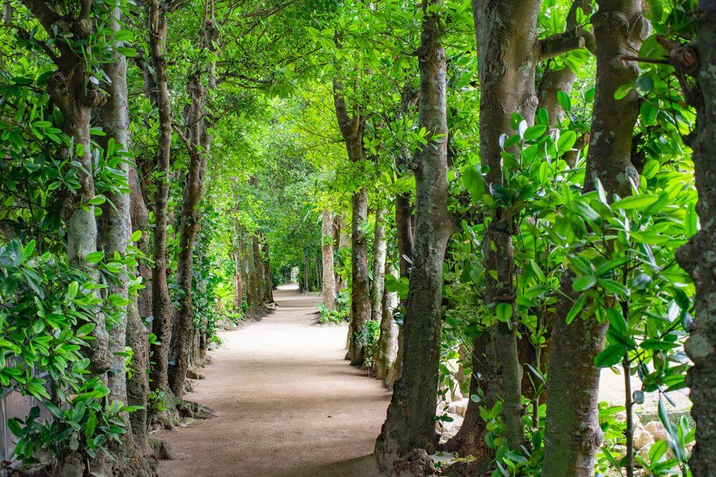 夏に訪れたい沖縄のとっておきスポット6選