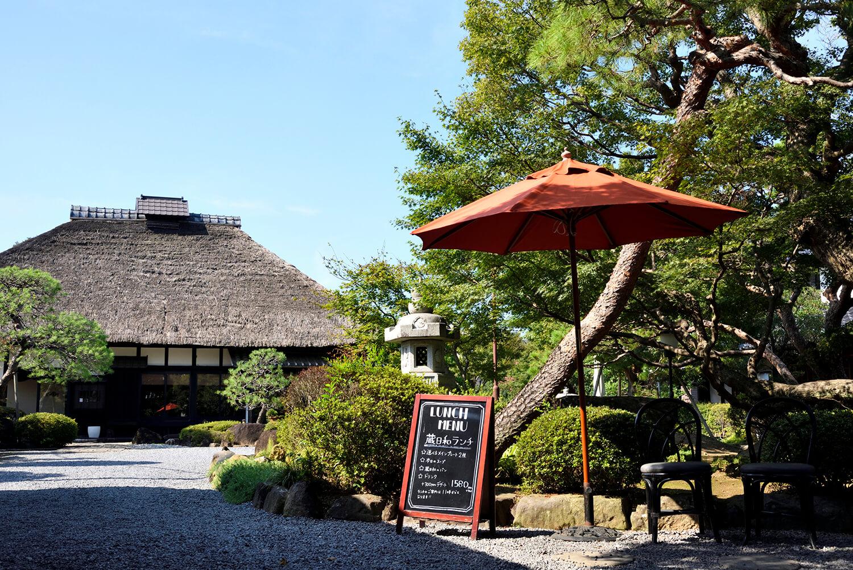 モミジやアカマツ、サルスベリが茂る自然豊かな日本庭園