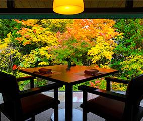 紅葉に向かう贅沢な空間